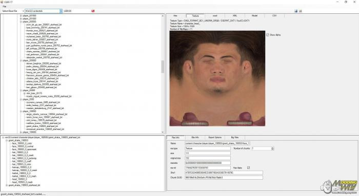 "FIFA 17 ""CG File Explorer 17"""